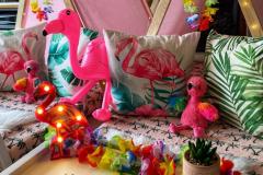 Tropical Flamingo 3